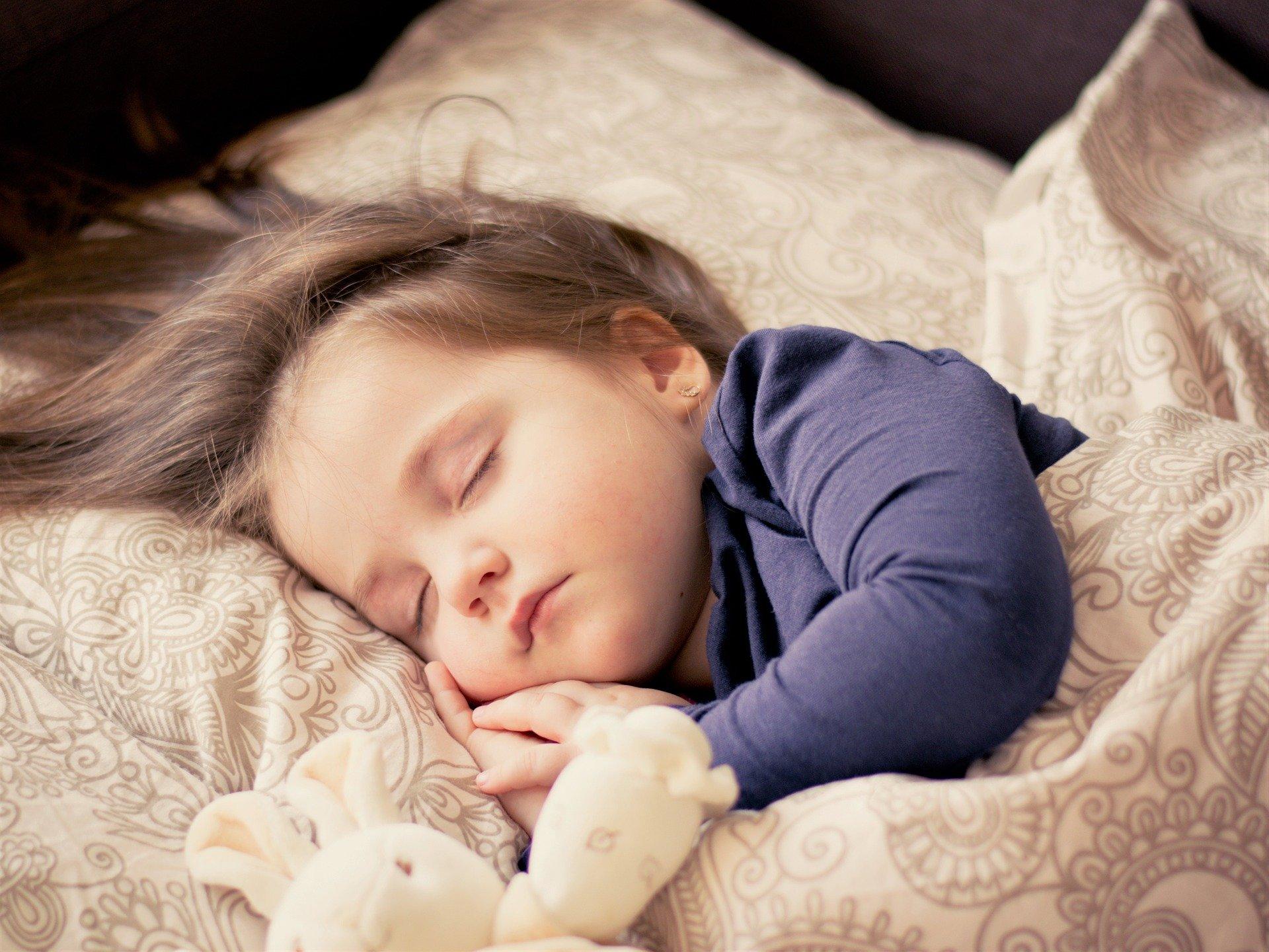 ぬいぐるみと幼児の可愛い寝顔