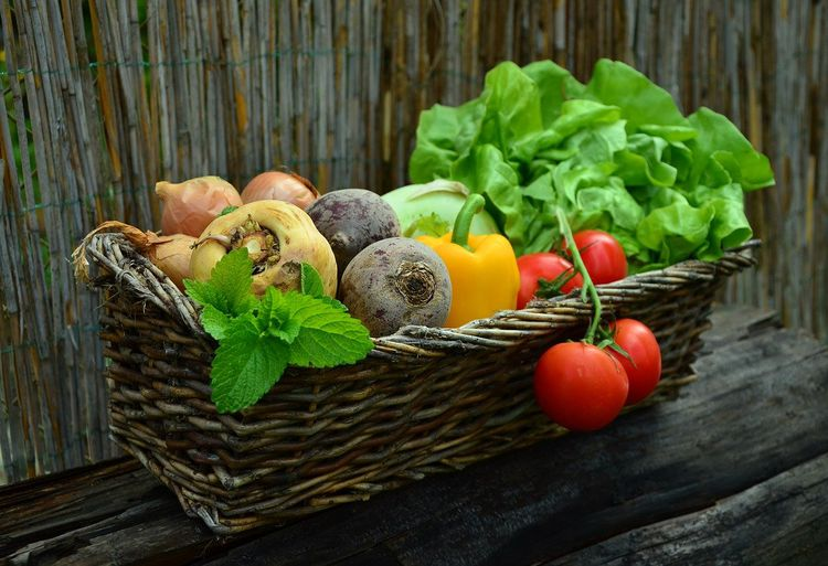 カゴに入れられた彩豊かな野菜