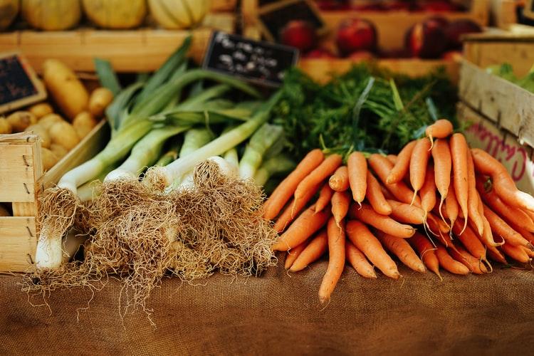 野菜の根っこ