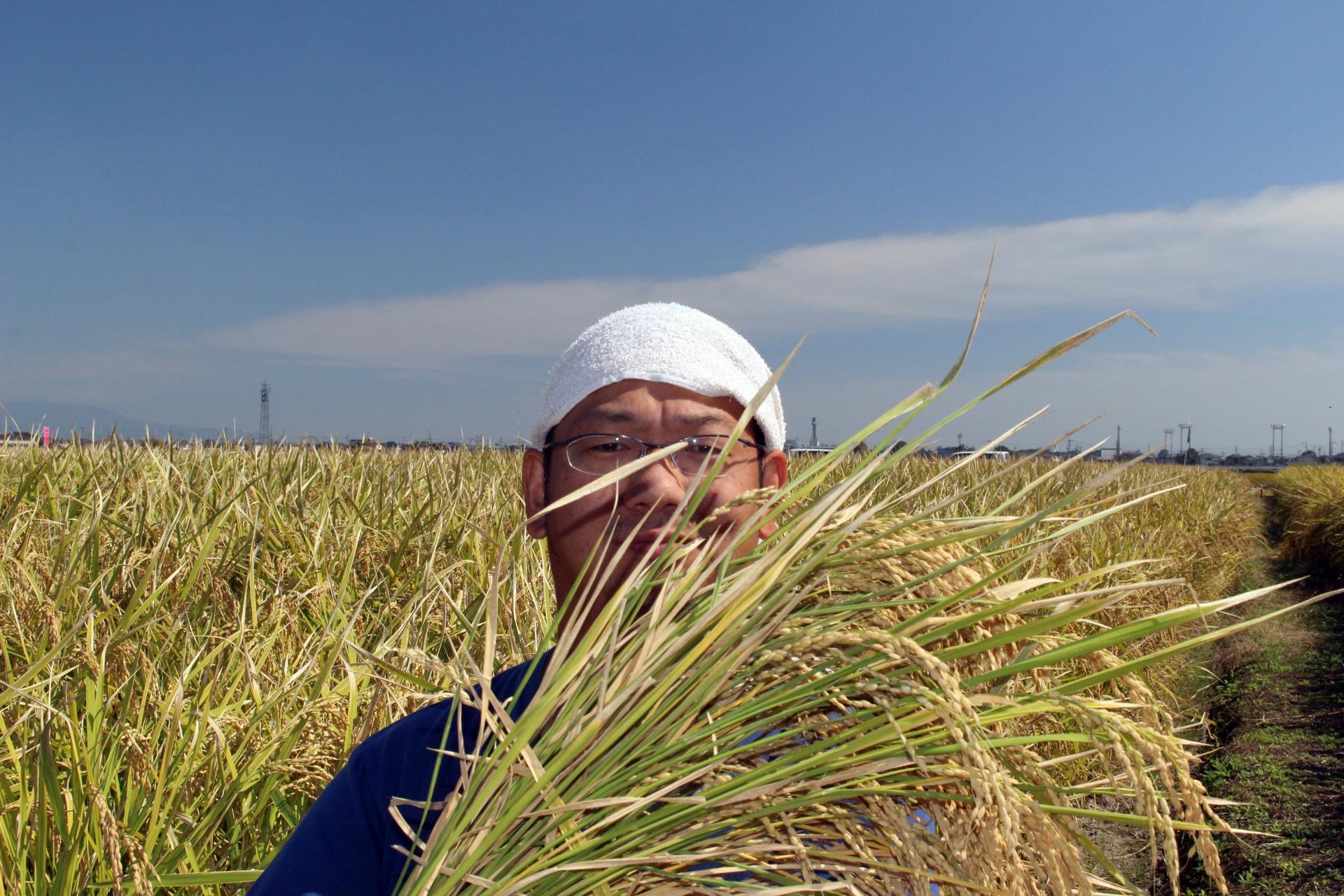 お米とお米の生産者