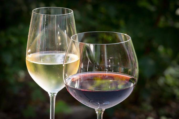 ワイングラスに入った赤と白のワイン