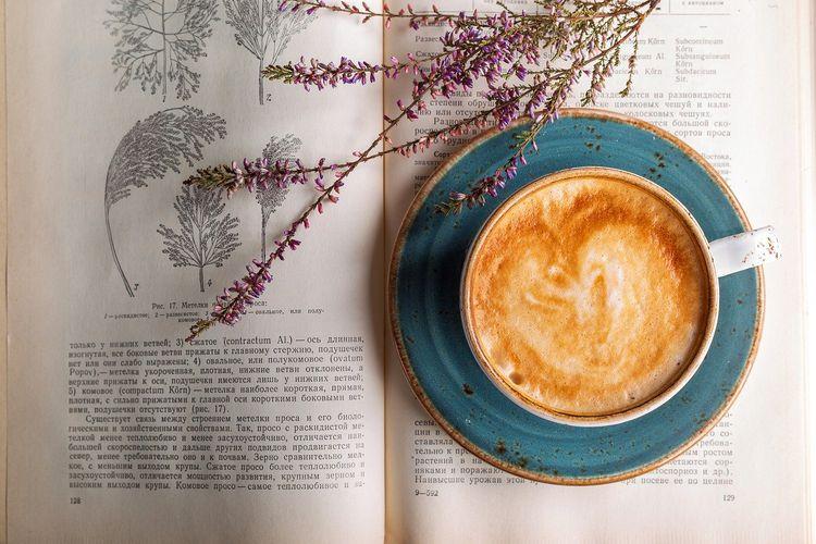 本の上に置かれたコーヒーと草