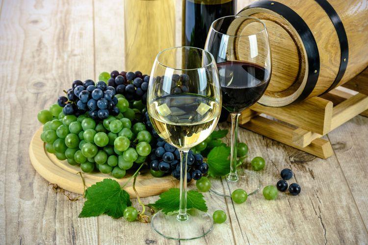 オーガニックのワインとは? ビオワインや自然派ワインとはどこが違うの?