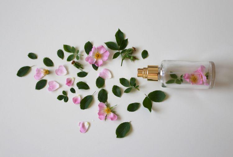オーガニックの香水とは? ほかの香水とどこが違うの?