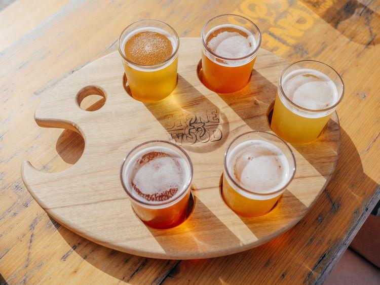 オーガニックビールと普通のビールの違いとは? おすすめ商品8選を紹介
