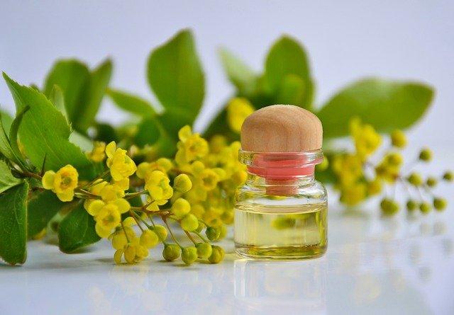 オーガニック のひまし油と黄色い実の枝