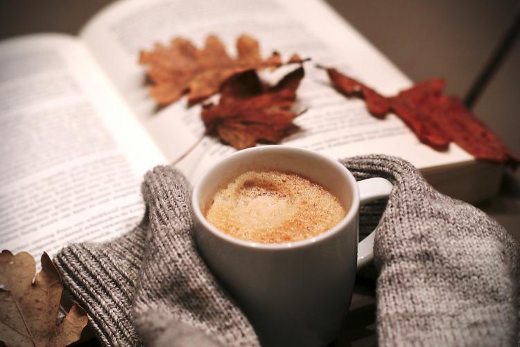 オーガニックのインスタントコーヒーとは? 選び方のポイントとおすすめ商品3選を紹介!