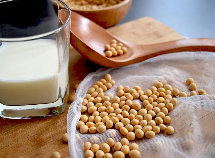 オーガニックの豆乳とは? 有機豆乳を選ぶポイントとおすすめ商品5選を紹介