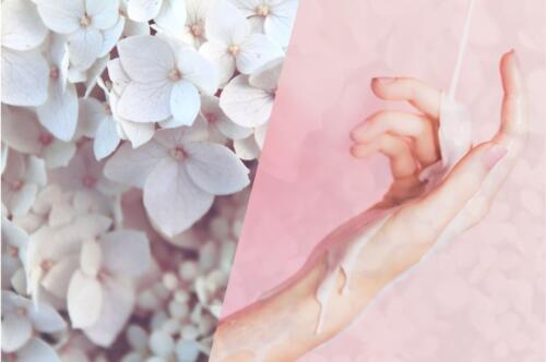 小さな花たちとクリームを受け止める手